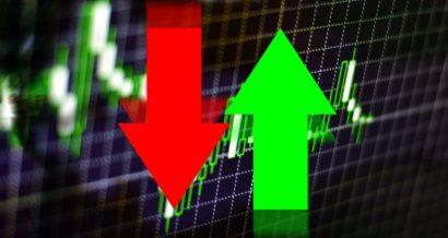 Grafika GDP / Shutterstock.com