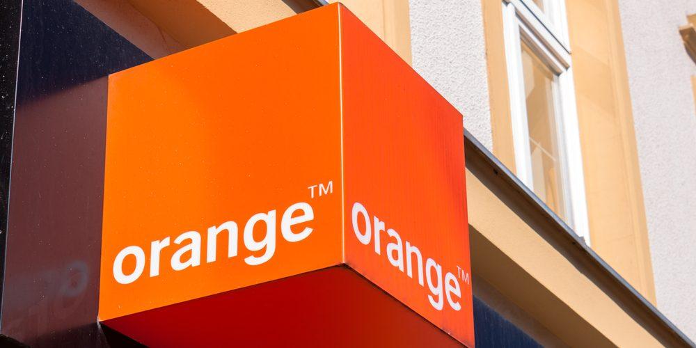 orange / shutterstock.com