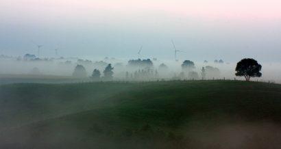 Suwałki, Polska - farma wiatrowa w tle. Fot Wojciech Lisinski / Shutterstock