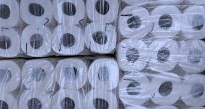 Rolki papieru toaletowego. Fot. Shutterstock