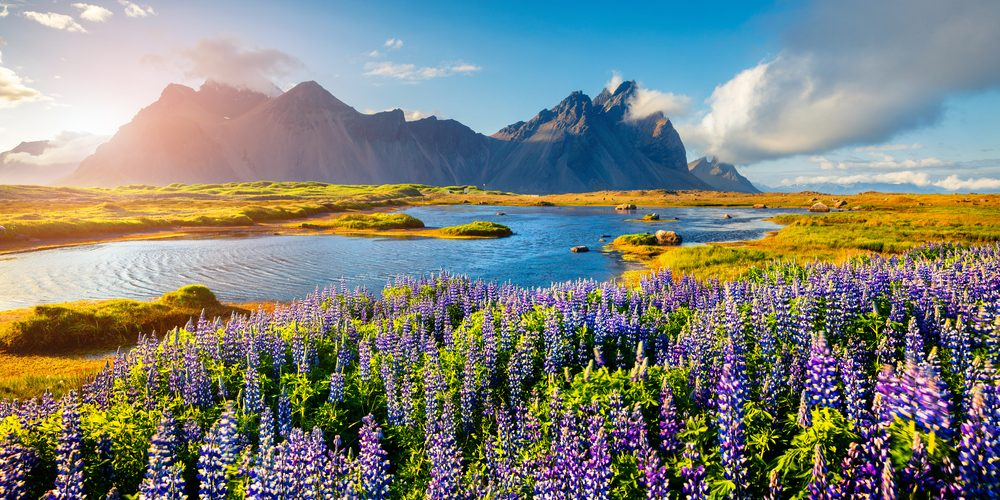 Islandia. Fot. Shutterstock
