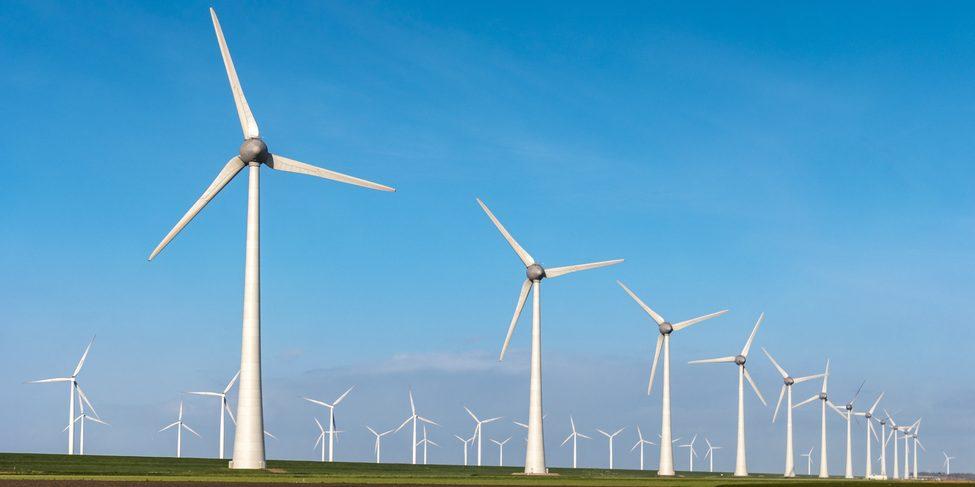 Farma wiatrowa, Fot. Shutterstock