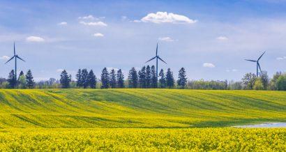 Elektrownia wiatrowa, Fot. Shutterstock.com