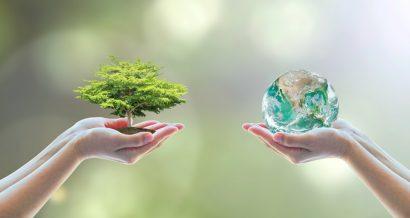 Środowisko, ekologia, klimat. Fot. Shutterstock