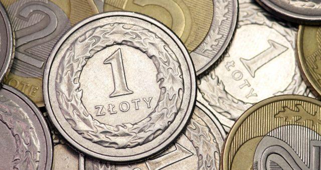 Polski złoty. Fot. Shutterstock