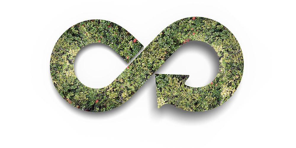GOZ, Fot. Shutterstock.com