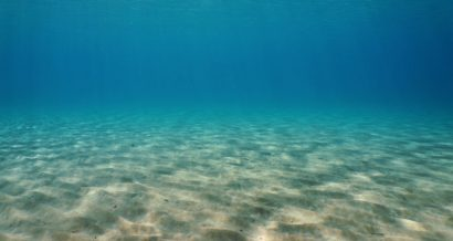 Dno morskie