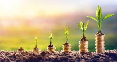Zielone inwestycje. Fot. Shutterstock
