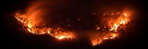 Pożar w Australii