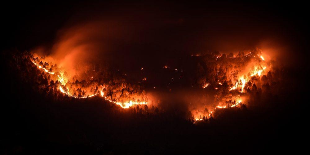 Pożar w Australii, fot. shutterstock.