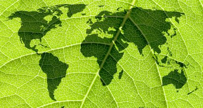 Zielona mapa świata, fot. Shutterstock.