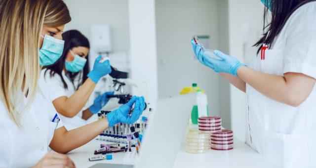 Testy medyczne, Fot. Shutterstock.com