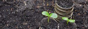 Finanse i ekologia, fot. Shutterstock.