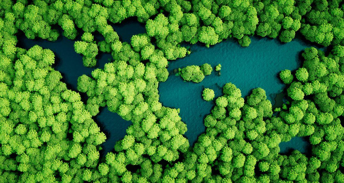 zrównoważony rozwój, fot. Shutterstock