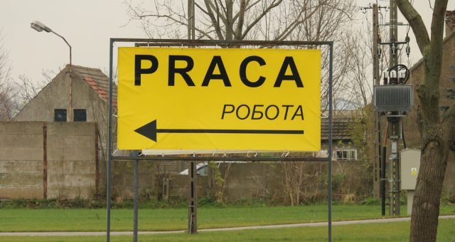 "Napis ""praca"" po polsku i ukraińsku."