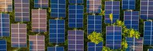 Panele słoneczne - widok z góry, fot. Shutterstock.
