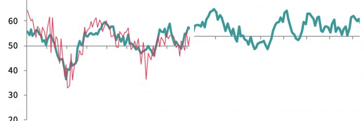 Wykresy PMI, fot. IHS Markit.